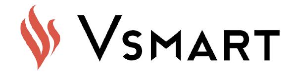 Logo vsmart-02
